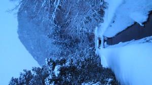 一年で一番白い松岳山